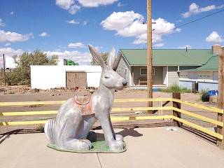 Ride the jack rabbit at the Jack Rabbit Trading Post